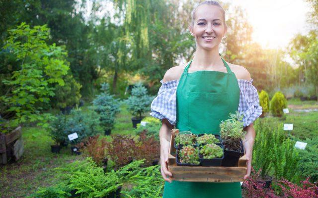 nainen pitelee yrttilaatikkoa puutarhassa