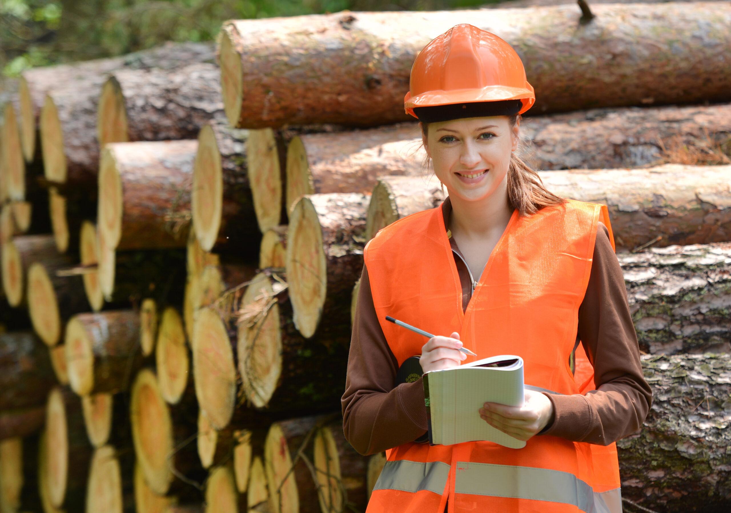Metsäala tutuksi - työtä metsästä (nro 698521)